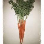 Receitas traduzidas: Carrot Cake (Bolo de Cenoura)
