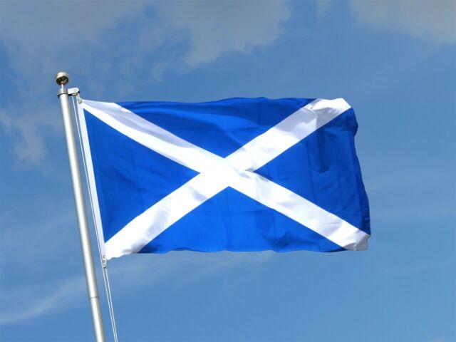 scotch x scots x scottish
