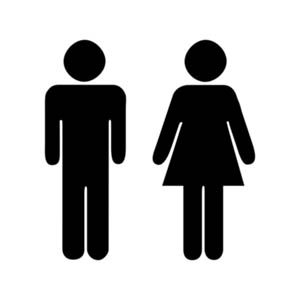gender x genre